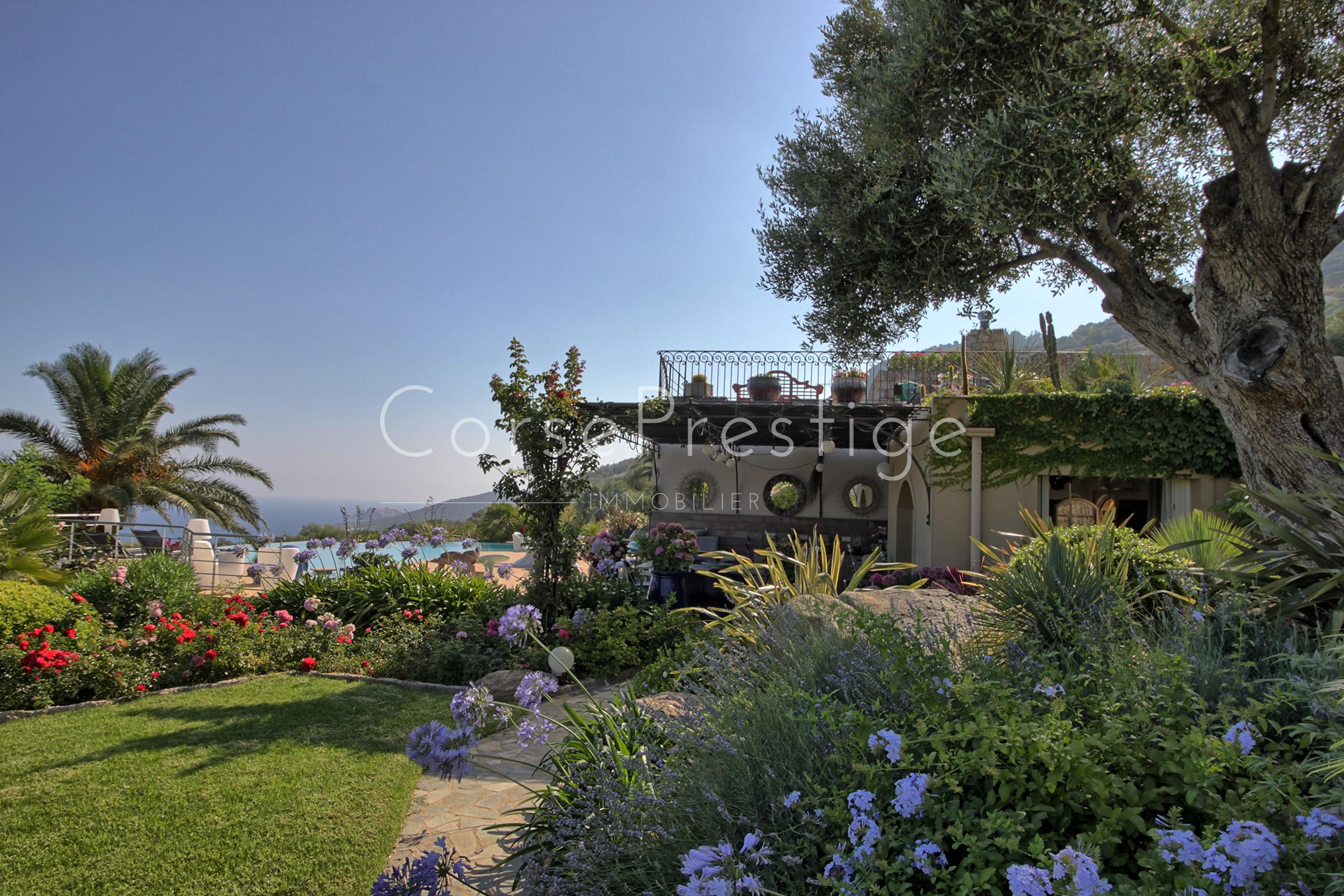 Villa-facing-the-sea-in-Corbara-N69-5