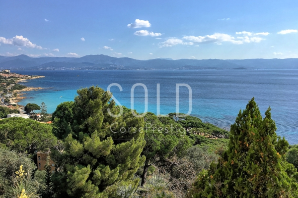 PROPERTY FOR SALE AJACCIO - SANGUINAIRES - REF N79